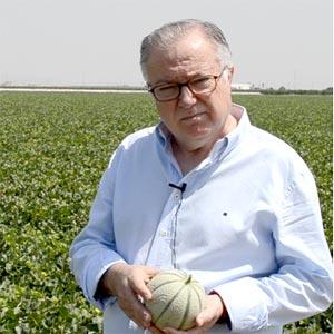 Laureano-Montesinos