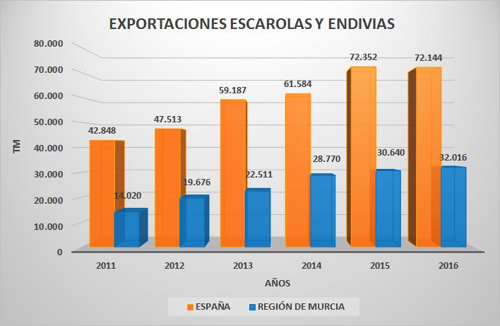 escarola-exportaciones-ev